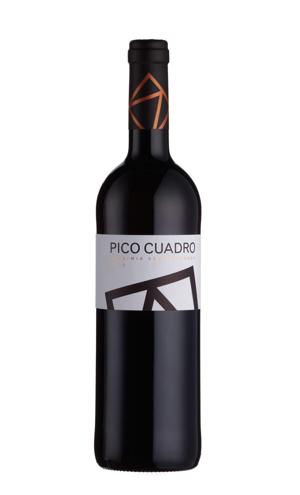 Ribera del duero -Pico Cuadro VS 2009 DO